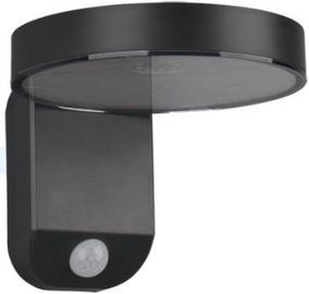 Trio Posadas antracīta sienas LED gaismeklis, IP44, 4.5W, 290lm ar saules baterijām un kustības sensoru