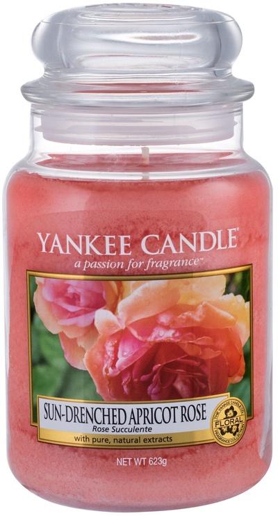 Ароматическая свеча Yankee Candle Classic Large Jar Sun Drenched Apricot Rose, 623 г