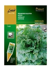 Salātu sēklas Hercules