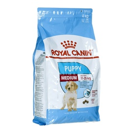 Sausas ėdalas šunims Royal Canin Medium Junior, 4 kg