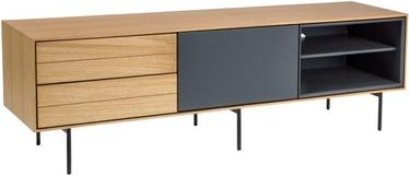 Signal Meble Sion TV Table Oak/Graphite