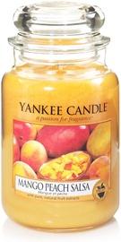 Aromātiskā svece Yankee Candle Classic Large Jar Mango Peach Salsa, 623 g, 110 h