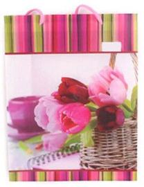 Pareto Centrs Gift Bag Tulips