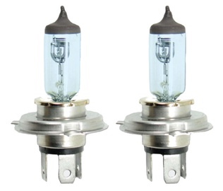 Bottari Superwhite Halogen H4 12V 60/55W 2pcs 30514