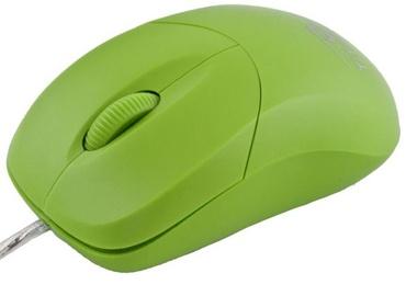 Esperanza Titanum Arowana TM109 Green