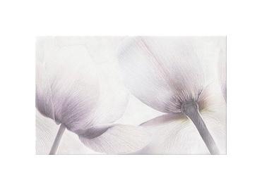 Keraminės dekoruotos sienų plytelės Elle Tulip, 40 x 25 cm