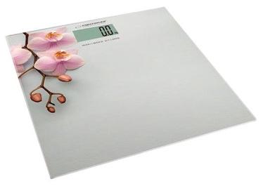 Kūno svarstyklės Esperanza Orchid EBS010