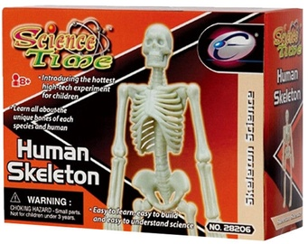 Eastcolight Human Skeleton 28008/28206