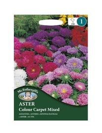 ASTERES Colour Carpet Mixed