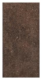 Klinkerinės plytelės Granitos, 30 x 60 cm.