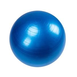 Nesporgstantis gimnastikos kamuolys LS3222, 55 cm