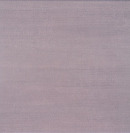 Akmens masės plytelės Newport T, 40,2 x 40,2 cm