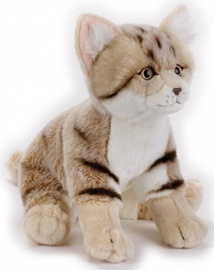 Dante National Geographics Desert Cat 26cm