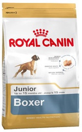 Royal Canin Breed Boxer Junior 12kg
