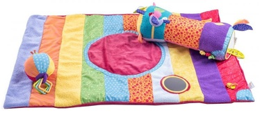Niny Soft Educational & Activity Play Gym 700016