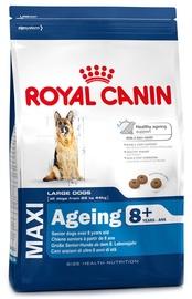 Royal Canin SHN Maxi Ageing +8 15kg