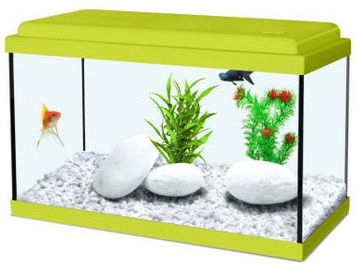 Zolux Aquarium Nanolife Kidz 40 Green