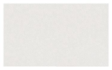 Dažomieji tapetai 124019