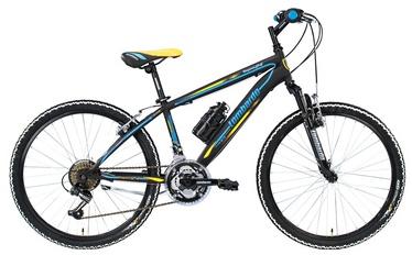 """Paauglių kalnų dviratis Lombardo Tropea, 24"""""""