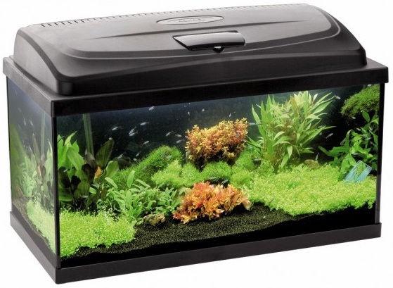 Akvariumas Aquael Classic Box 40 LED, juodas, 25 l, su įranga