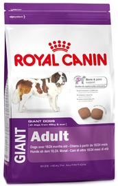 Royal Canin SHN Giant Adult 15kg
