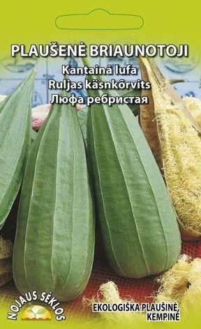 Kantaina-lufa Luffa