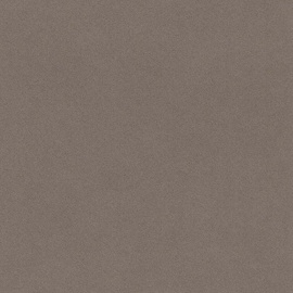 Viniliniai tapetai Rasch Passepartout 607277