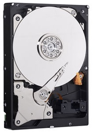 Western Digital Blue HDD 500GB 7200RPM SATA3 32MB WD5000AZLX
