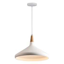 Pakabinamas šviestuvas Domoletti, MD60428C-1L, 40W, E27