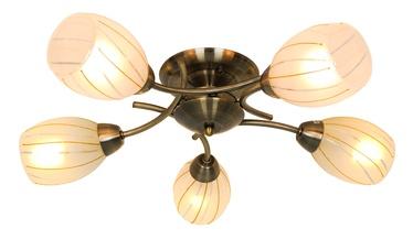 Lubinis šviestuvas Okko Gita CL16173-5-AB, 5X40W, E14