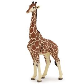 Dzīvnieku figūra Papo Giraffe Male 50149