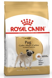 Royal Canin BHN Pug Adult 1.5kg