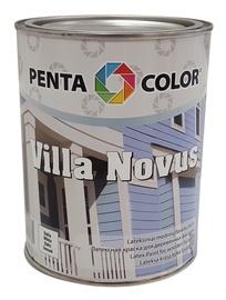 Krāsa fasādēm Pentacolor Villa Novus, 1 l, zaļa