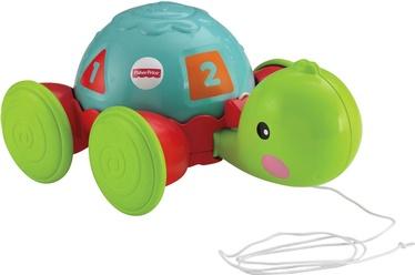 Žaislas tempiamas vėžlys Fisher Price Y8652, 1 m