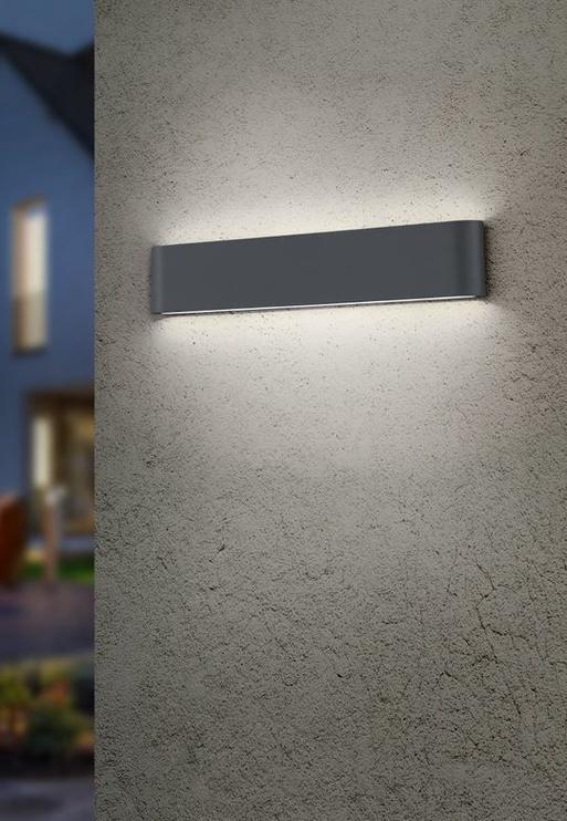 Tvirtinamasis šviestuvas Trio Thames, 2x8W, LED, 46.5cm, antracito