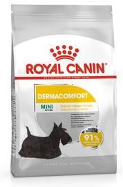Royal Canin SHN Mini Dermacomfort 8kg
