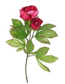 Kunst POJENG; 8025.20; TAMSIAI roosa
