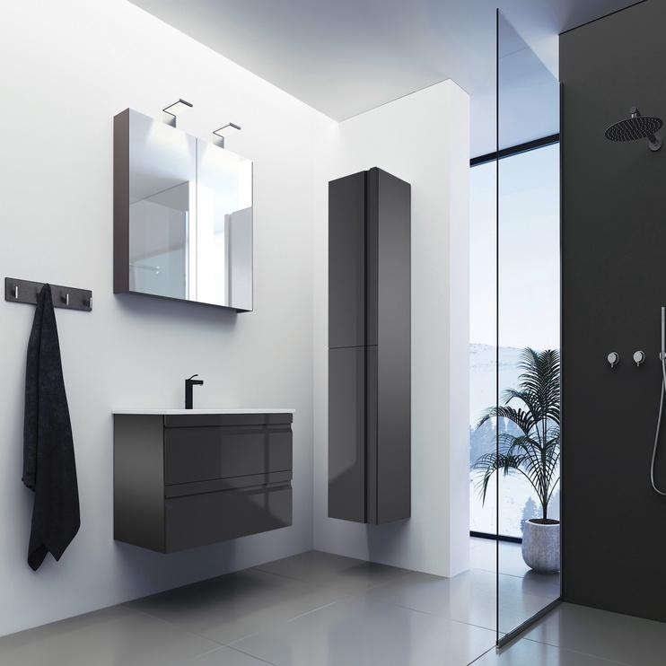 Pakabinama vonios spintelė Raguvos baldai Terra TU/35-2/D3F2, pilka