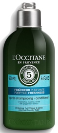 Plaukų kondicionierius L´Occitane Aromachologie Purifying Freshness Conditioner, 250 ml