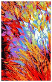 Paklājs Post Hali Santana 6632A_L0947, daudzkrāsains, 300x200 cm