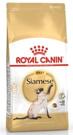 Sausas ėdalas katėms Royal Canin Siamese Adult, 2 kg