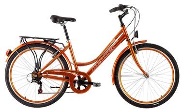 "Dviratis Kenzel Boulevard 44cm 26"" Orange 17"
