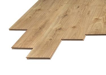 Lamineeritud puitkiudpõrand Domoletti Domoletti D3481, 10 mm, 33