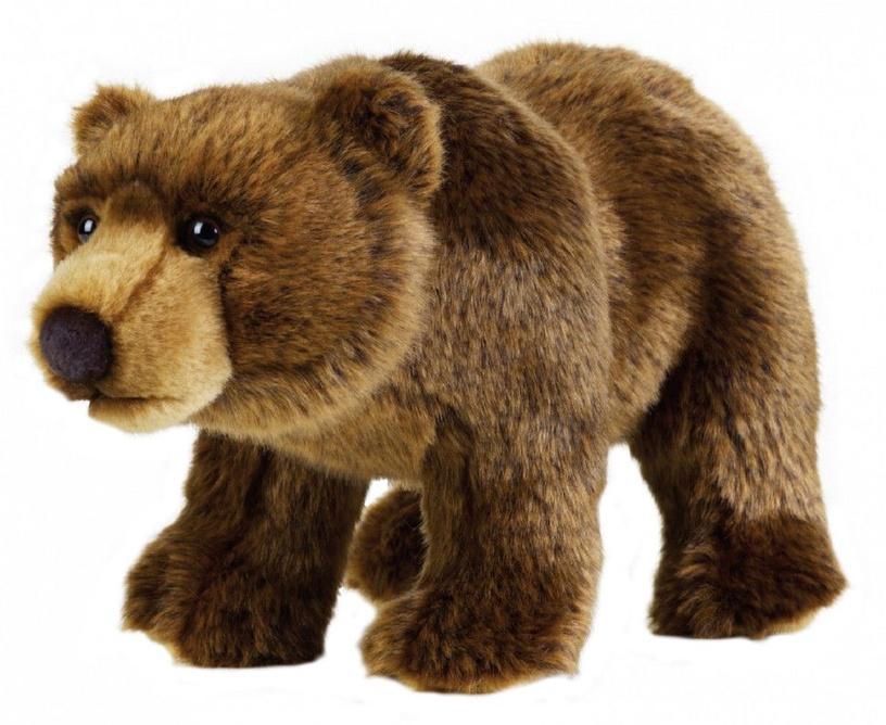 Pliušinis žaislas Dante National Geographic Grizli Bear, 30 cm