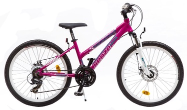 "Vaikiškas dviratis Kenzel Vulcano 300 24"" Pink 17"