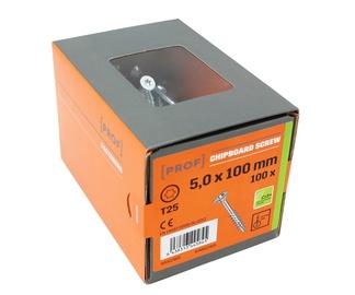 PUIDUKRUVI PROF TX25 5X100 100TK