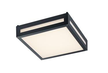 Lubinis šviestuvas Trio Newa 620060142, 1 x 13,5 W, SMD, LED