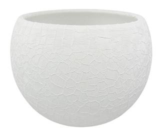 Вазон SN Ceramic Pot Lizard Ø17cm White