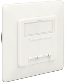 Delock Modular Wall Outlet Flush Mount 2-port Cat.6A LSA