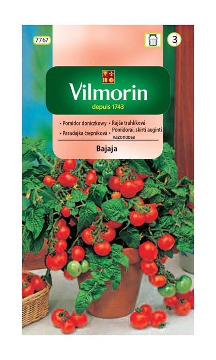 Sarkano tomātu sēklas Vilmorin Bajaj, puķu podiem